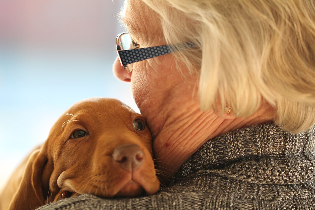 perro para las personas mayores Tu centro canino Damian Machado - Adiestramiento canino, guardería de perros, residencia canina, hotel para perros, adiestrador de perros en Tenerife (Canarias) - personas mayores y perros