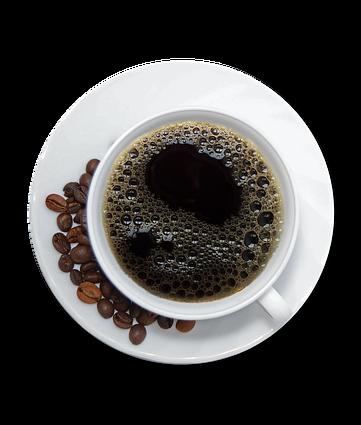 Chocolate, café y cafeína Todos estos productos contienen sustancias llamadas metilxantinas, que se encuentran en las semillas de cacao, el fruto de la planta que se usa para hacer café, y en las nueces de un extracto que se usa en algunos refrescos. Cuando las mascotas las ingieren, las metilxantinas pueden causar vómitos y diarrea, jadeo, sed y micción excesivas, hiperactividad, ritmo cardíaco anormal, temblores, convulsiones e incluso la muerte. Tenga en cuenta que el chocolate más oscuro es más peligroso que el chocolate con leche. El chocolate blanco tiene el nivel más bajo de metilxantinas, mientras que el chocolate para hornear contiene el más alto.