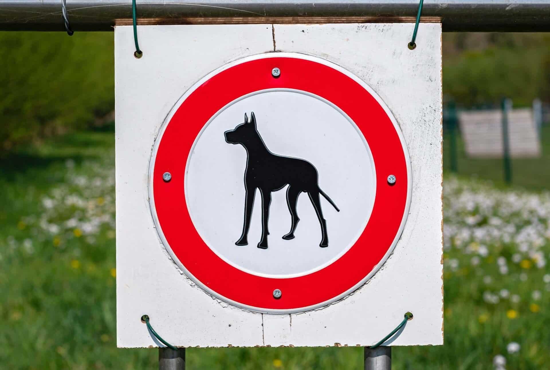 perros de guarda y defensa